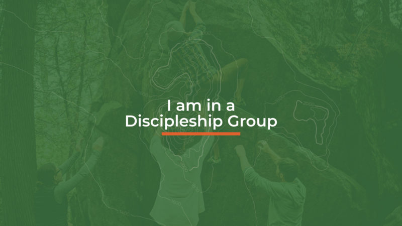 Discipleship Groups - I am in a D Group