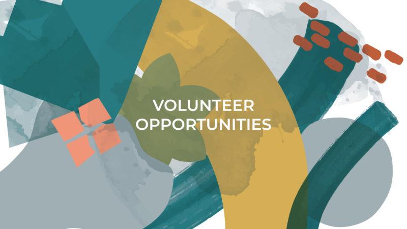 Kids - Volunteer Opportunities