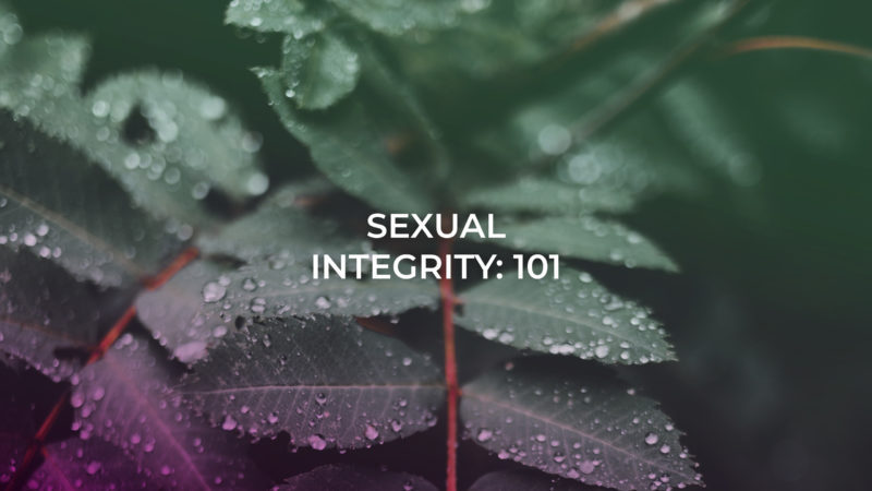 Soul Care - Sexual Integrity 101
