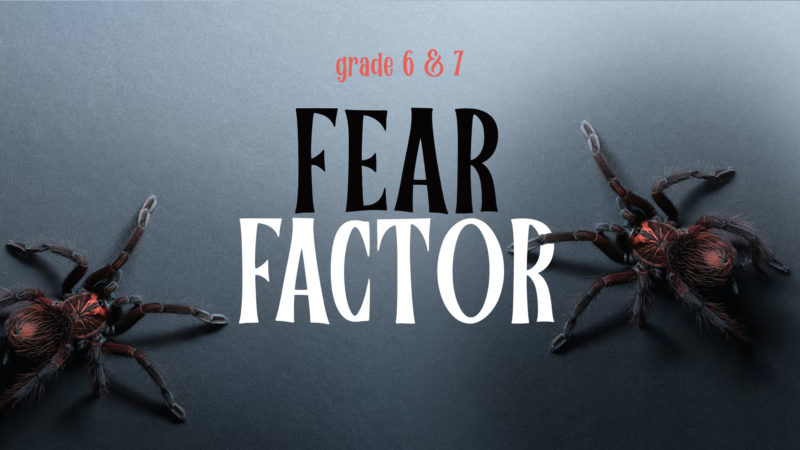 Grades 6 & 7 Fear Factor